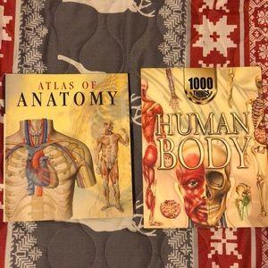 Other - Anatomy books